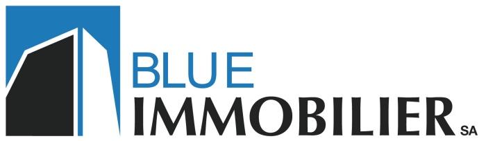 Blue Immobilier SA