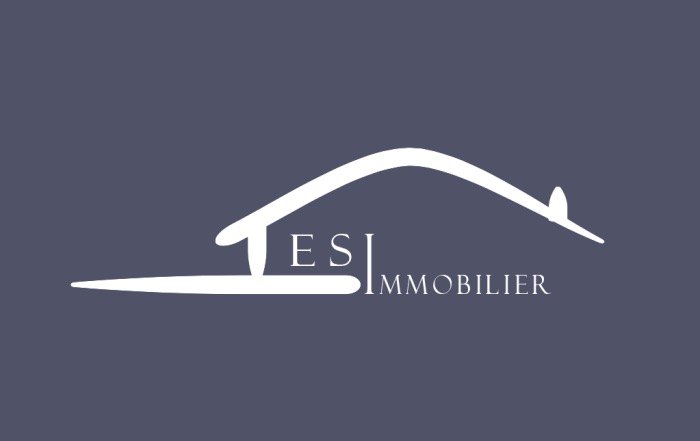 ESI Immobilier