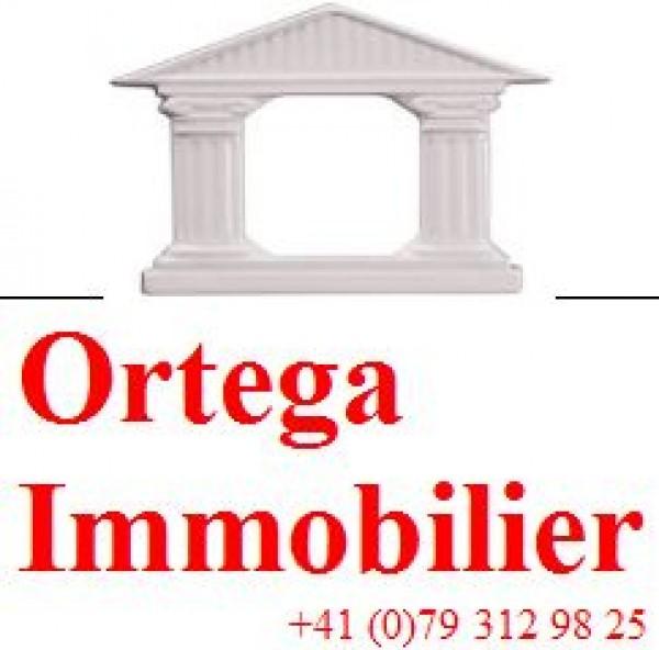 Ortega Immobilier