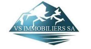 VS Immobiliers SA